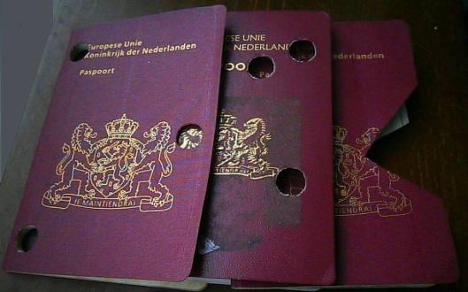 mh17 passports