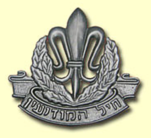 Fleur de LIs is the Military Badge of the Israel Intelligence Corps.