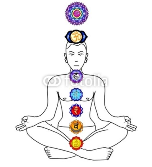Sacred Lotus is the channel to the universal hologram. ---------- Священный Лотос - это канал к вселенской голограмме.