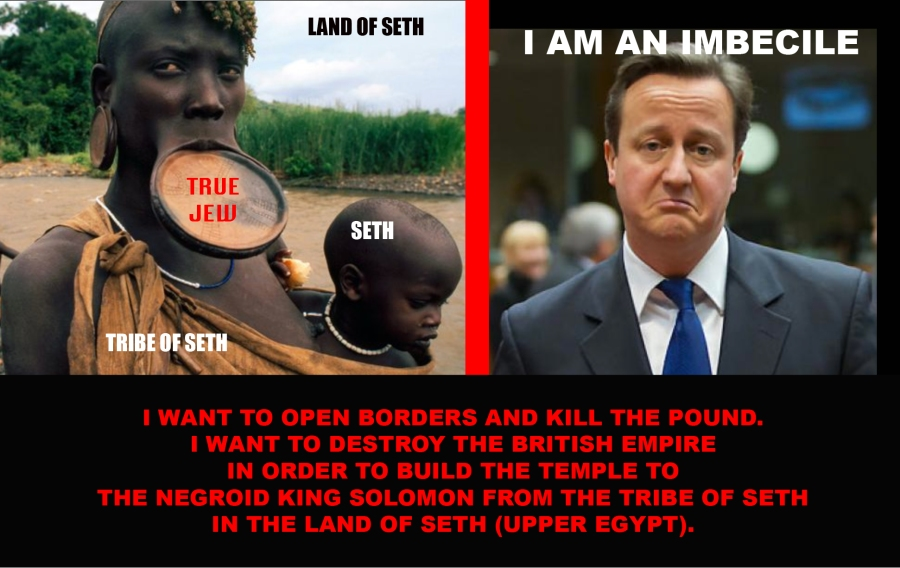 Cameron is an Imbecile.