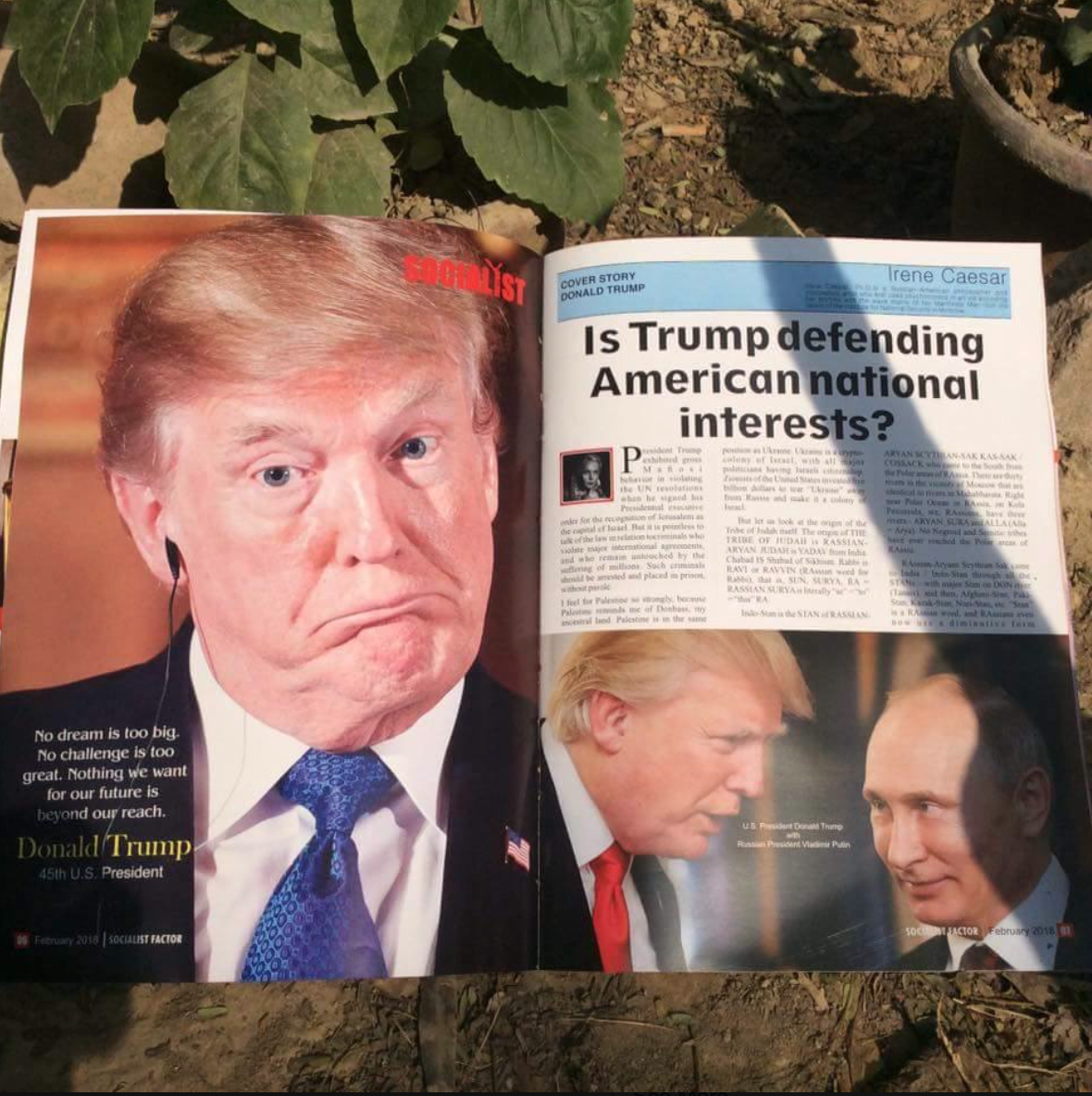 2018_2_IRENE_CAESAR_IS_TRUMP_DEFENDING_AMERICAN_NATIONAL_INTERESTS_8