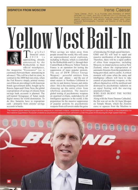 2019_12_irene_caesar_bail_in_for_yellow_vests_1